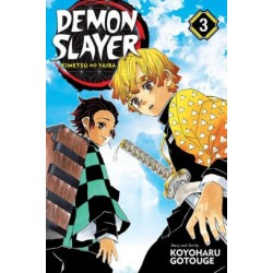 Demon Slayer Kimetsu No Yaiba V03