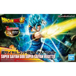 DBS FRS SSGSS Vegetto