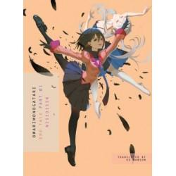 Owarimonogatari Novel Part 1