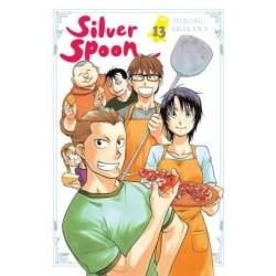 Silver Spoon V13