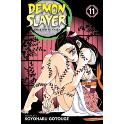 Demon Slayer V11 Kimetsu No Yaiba