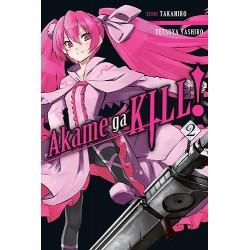 Akame Ga Kill V02