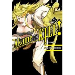 Akame Ga Kill V03