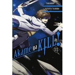 Akame Ga Kill V11
