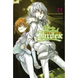 Certain Magical Index Novel V22