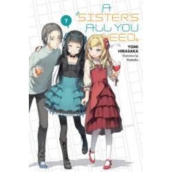 Sister's All You Need. Novel V07