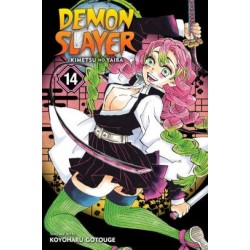 Demon Slayer V14 Kimetsu No Yaiba