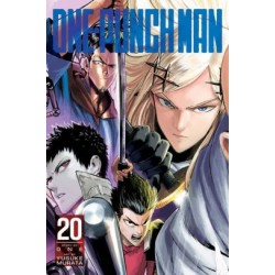 One-Punch Man V20