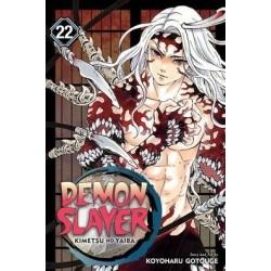 Demon Slayer V22 Kimetsu No Yaiba