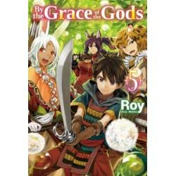 By the Grace of the Gods Novel V05
