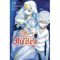 Certain Magical Index Novel V13