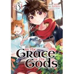 By the Grace of the Gods Manga V03