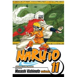 Naruto V11