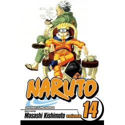 Naruto V14