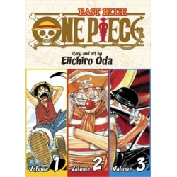 One Piece 3-In-1 V01