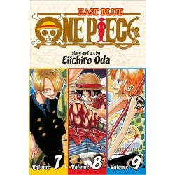 One Piece 3-In-1 V03