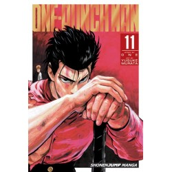 One-Punch Man V11