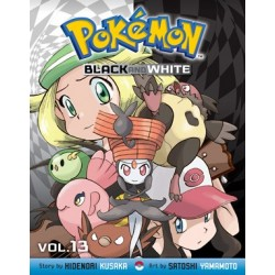 Pokemon Black & White Slim V13