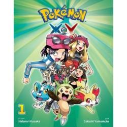 Pokemon XY V01