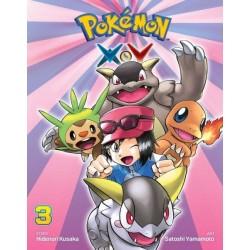 Pokemon XY V03