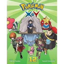 Pokemon XY V12