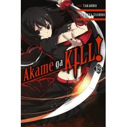 Akame Ga Kill! V13