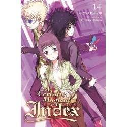 Certain Magical Index Novel V14
