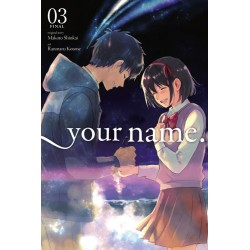 Your Name. Manga V03