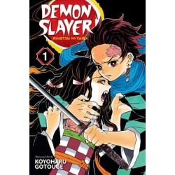 Demon Slayer Kimetsu No Yaiba V01